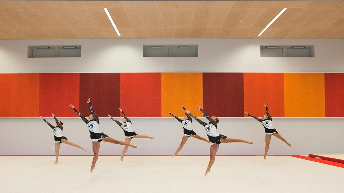 Acoustic wall panels for gymnasiums